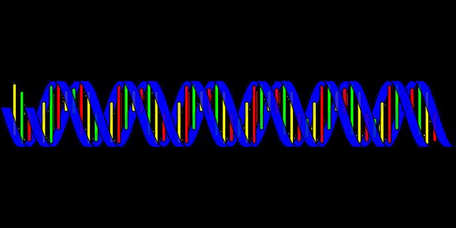 šroubovice DNA ilustrace